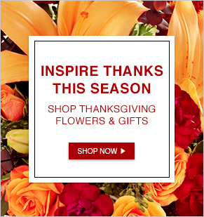 Inspire Thanks This Season. Shop Thanksgiving Flowers & Gifts.